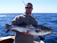 Ri striper fishing charters on the charter boat adventure for Rhode island saltwater fishing license